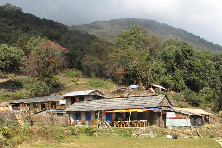 Mardi Himal Accommodation